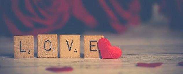 choosing a niche you love